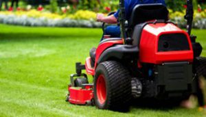 ride-on-lawn-mowing