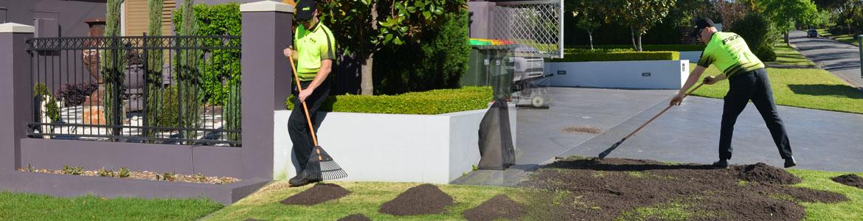 lawn-renovation-top-dressing